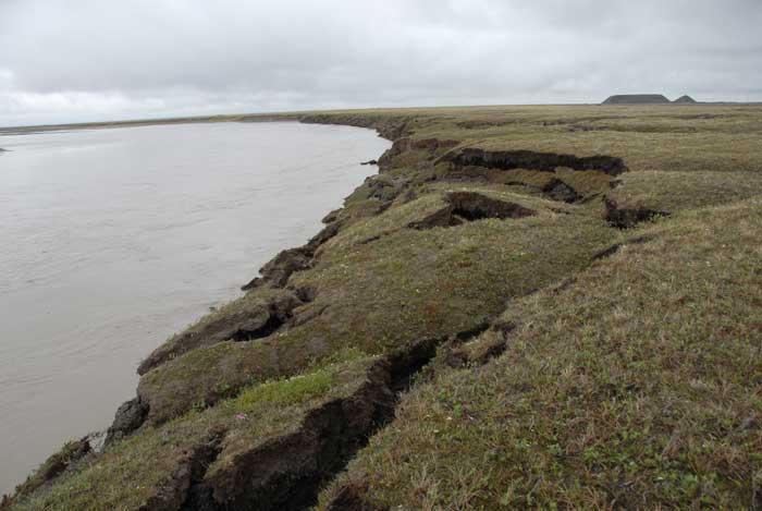 permafrost ártico
