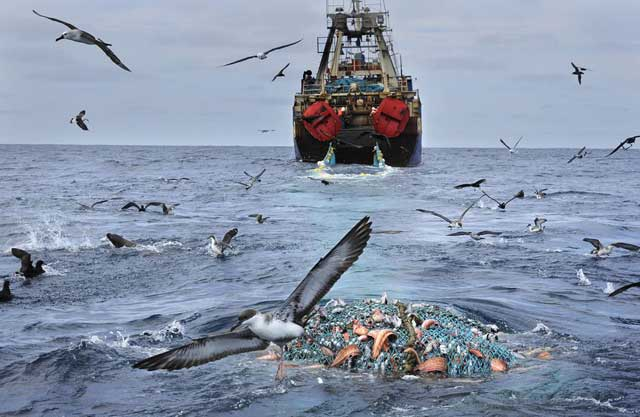 barco pesquero en Sudáfrica