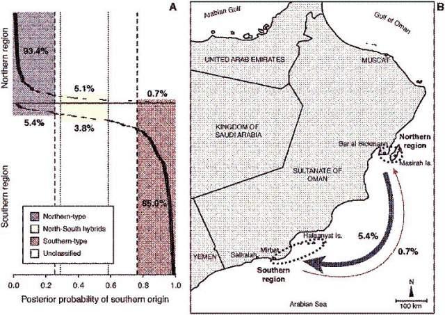 migraciones del pez payaso en el Mar arábigo