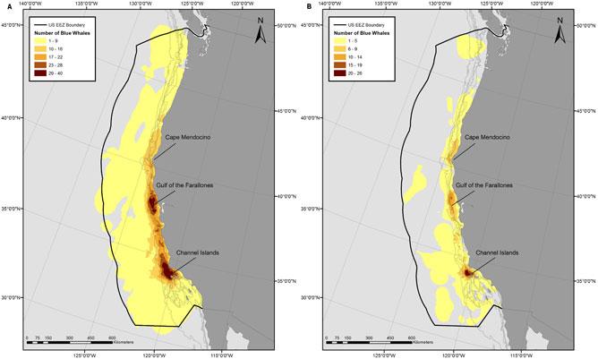 superposición rutas de ballenas y buques