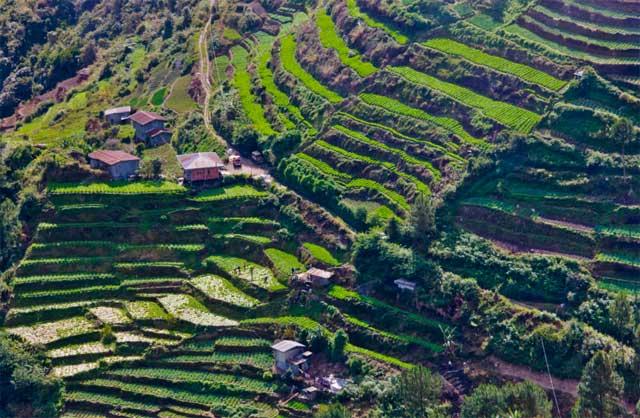 terrazas de arroz, Banaue - Filipinas