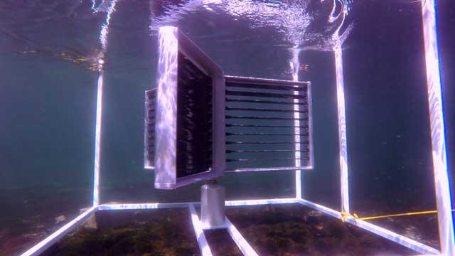 turbina oceánica de Crowd Energy