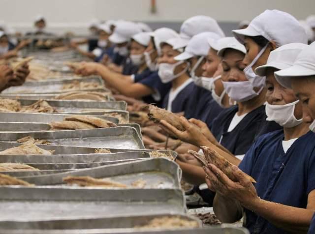 trabajadoras en la conserva de atún en Filipinas