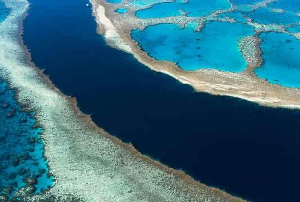 arrecifes filmados por un dron