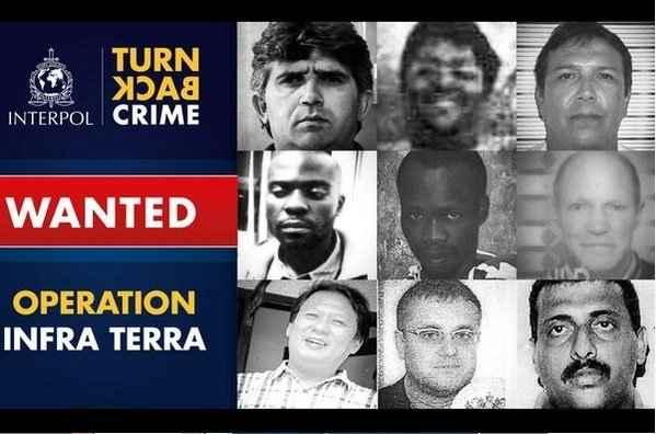 delincuentes contra el medio ambiente buscados por Interpol
