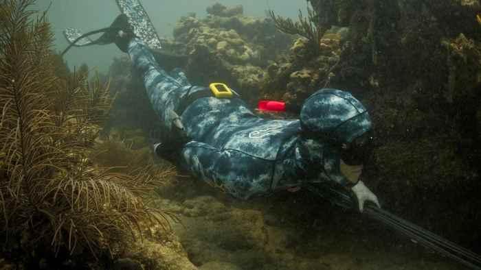 escudo eléctrico anti tiburones en un buzo