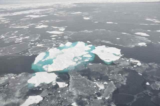 disminución del hielo marino en 2014