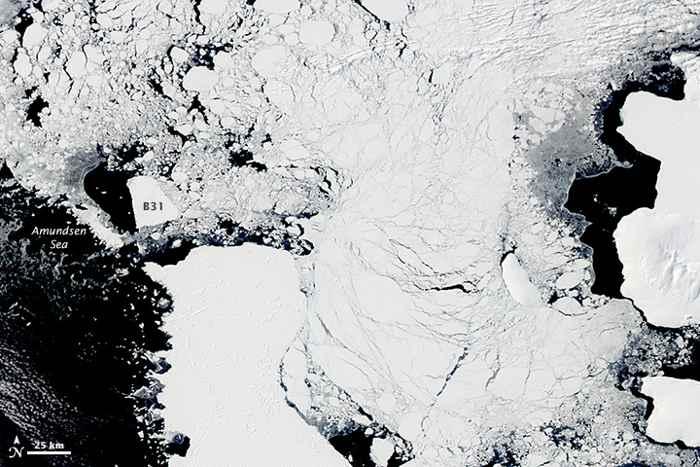 icerberg B31 en la bahía de Pine island