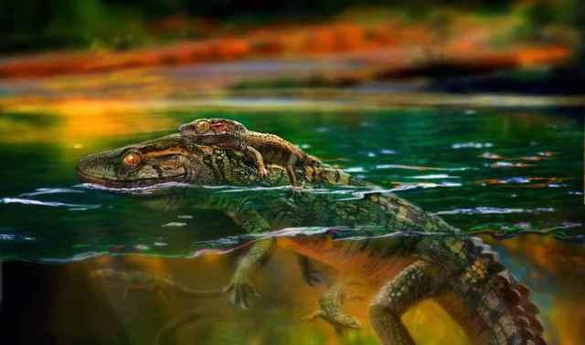 philydrosaurus madre cuida de sus bebés
