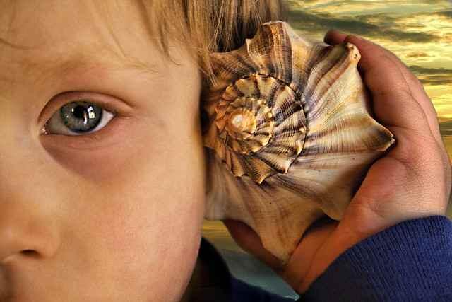 ecuchar los sonidos del mar en una concha