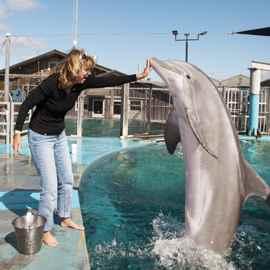 Terry Williams con un delfín nariz de botella