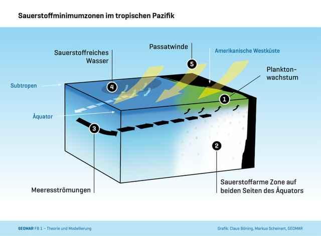 vientos en el Pacífico y temperatura