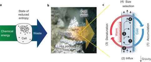 energía química dentro de un microporo