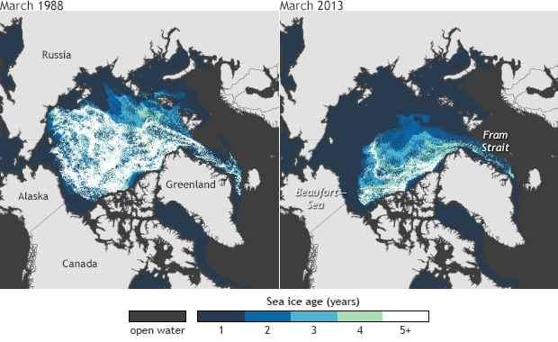 superficie del hielo marino del Ártico