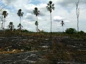 incendio en Guatemala visto desde el terreno