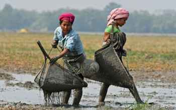 pesca de subsistencia por mujeres en la India
