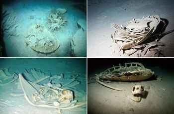 esqueletos de tortugas en Sipadan