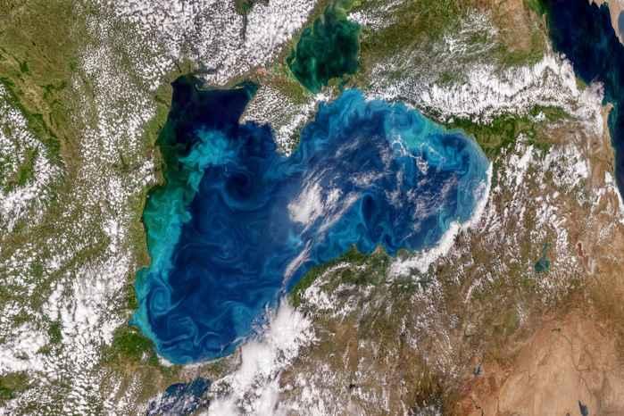 fitoplancton turquesa en el Mar Negro