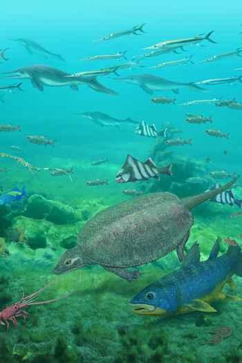 peces durante el Triásico en China