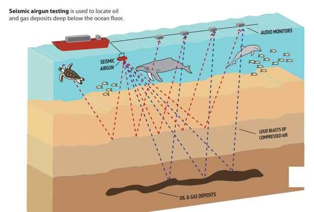 prospección marina de petróleo
