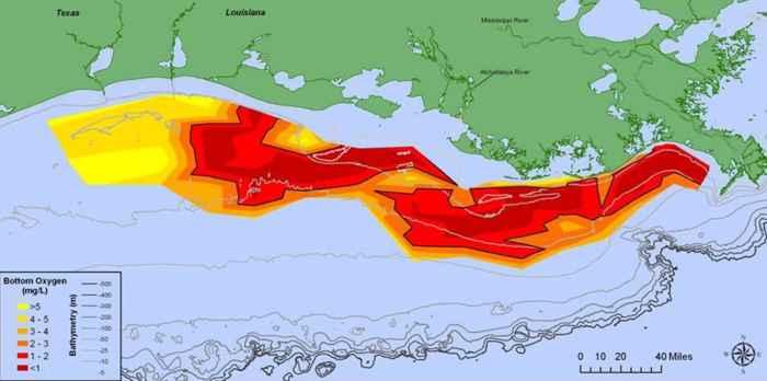 zona muerta del Golfo de México