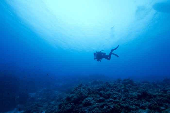 buscando bacterias en el océano profundo