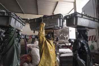 descarga de pescado en Senegal
