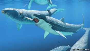 megalodon ataca la aleta de una presa