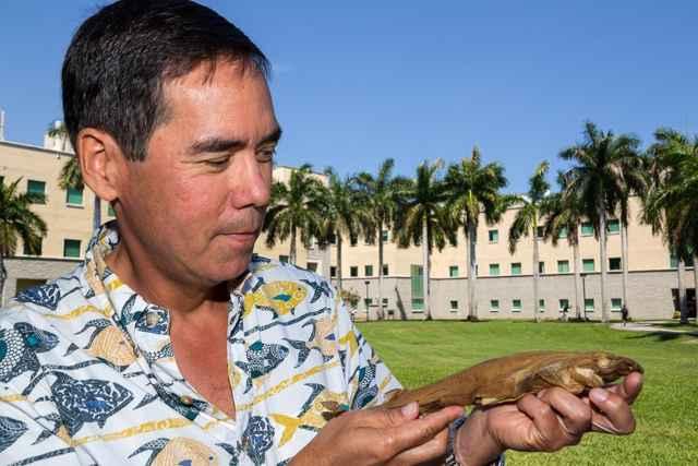 Stephen M. Kajiura con el tiburón que brilla