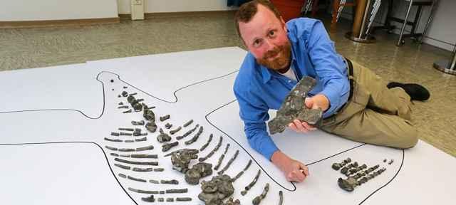 Sven Sachs con los fósiles del plesiosaurio