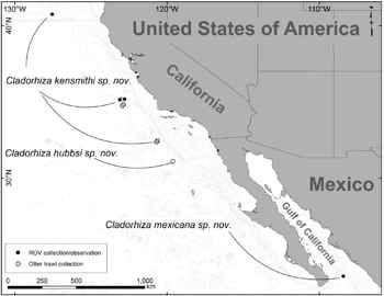 mapa de las esponjas en California