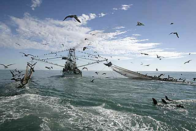barco arrastrero