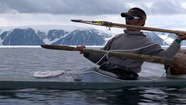 caza tradicional de narvales