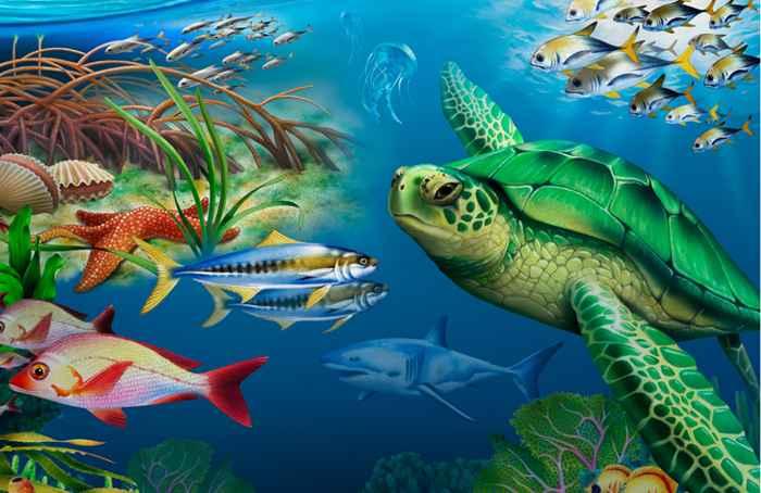 Día de la Tierra 2015, océanos saludables