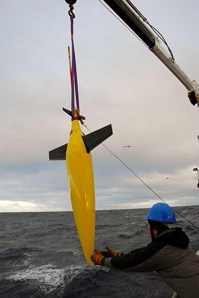 glider o planeador marino