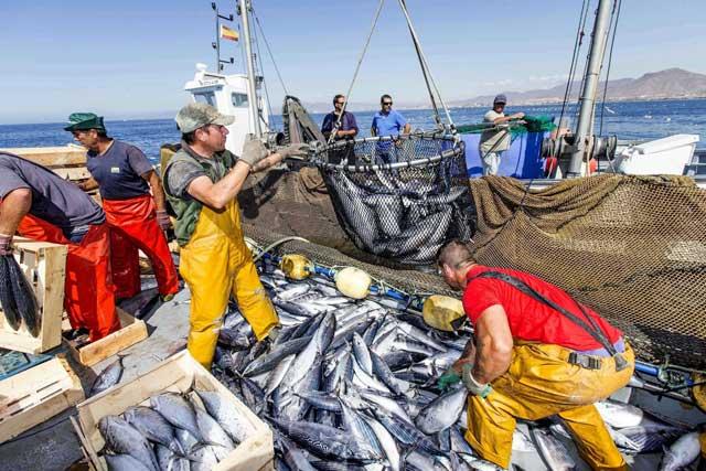 pescadores de atún españoles en el Mediterraneo