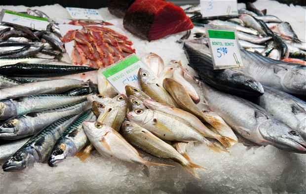 pescados grasos