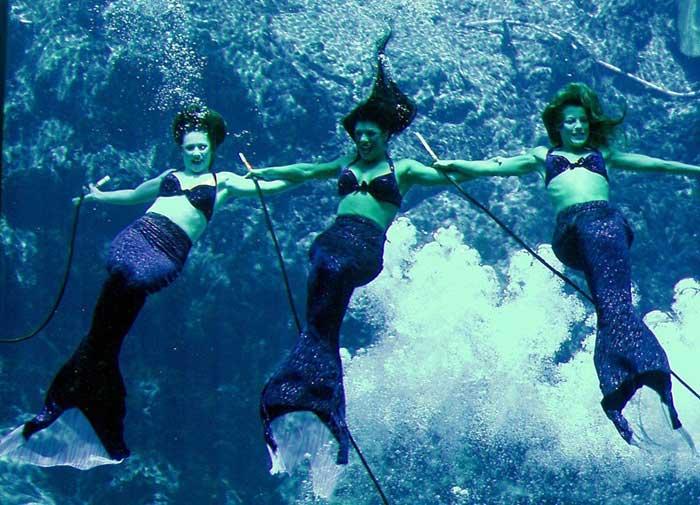 Las sirenas de Weeki Wachee Springs