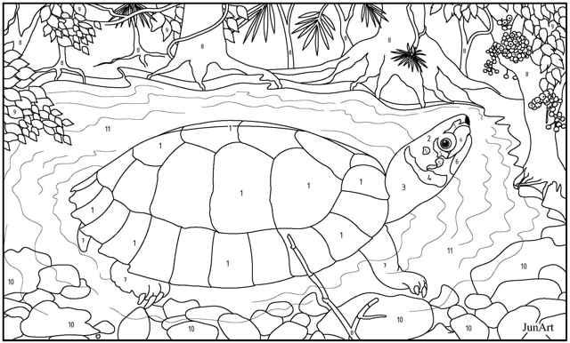tortugas de bosque de Palawan (Siebenrockiella leytensis) lámina para colorear