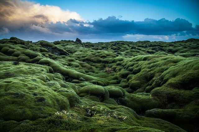 campo de lava de Eldraun, Islandia
