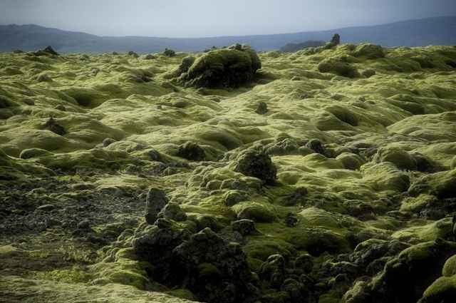 campo lava Eldraun 4