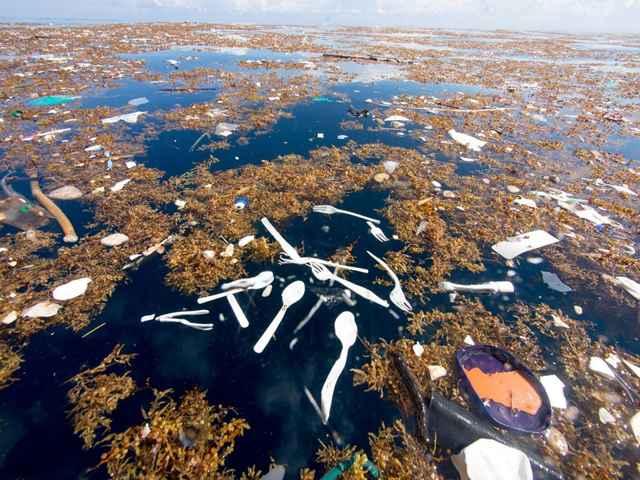 basura de plástico en el Caribe