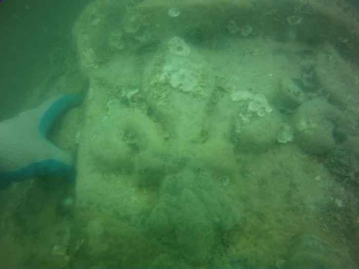 flor de lis en monumento de mármol naufragio Florida