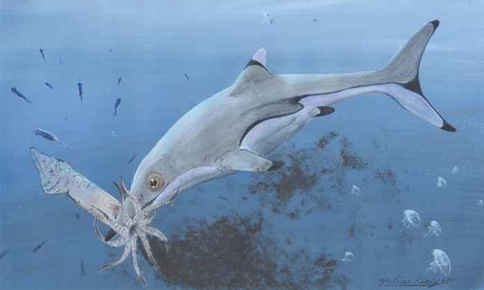 ictiosaurio devora un calamar