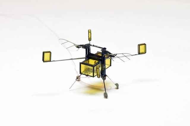 robot nadador volador