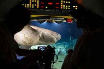 tiburón ataca submarino de Blue Planet II