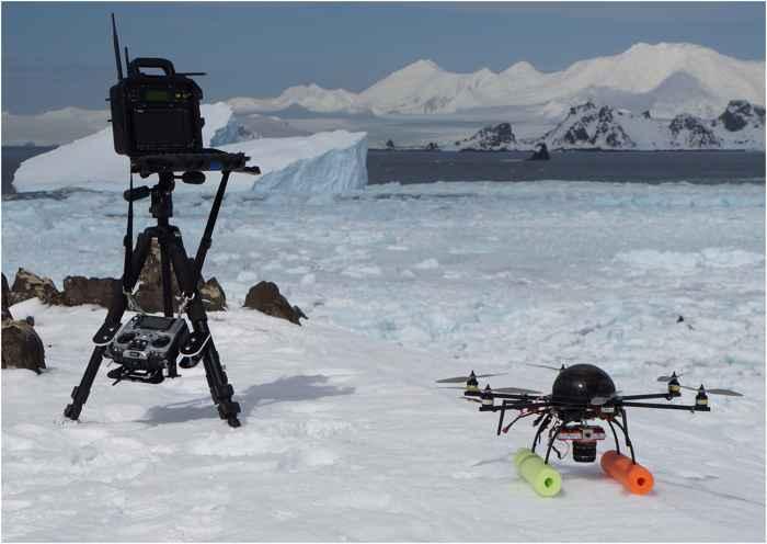 drone para monitorear focas leopardo