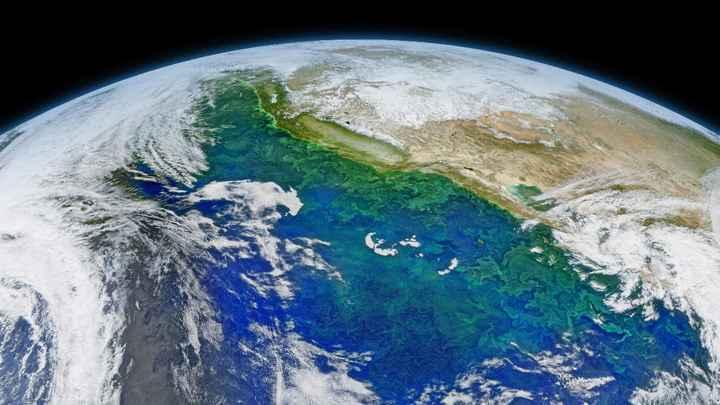 floración de fitoplancton en el Océano Pacífico<
