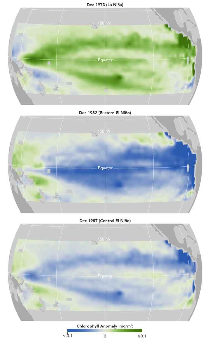 mediciones de clorofila en el Pacífico