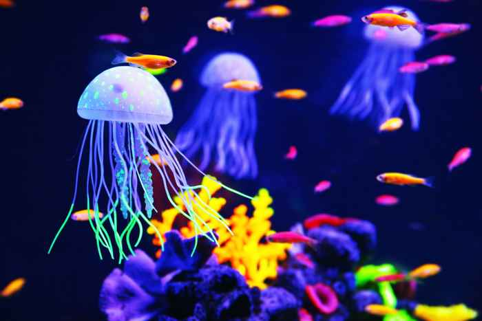 súper poderes de las medusas